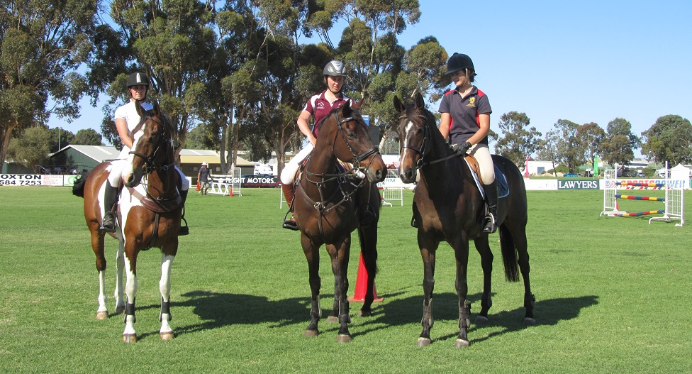 horsesinaction-loxton show